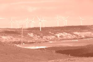 Wind power provides half of Scotland's energy image